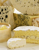 Still life with various types of cheese