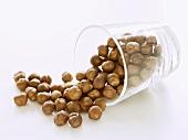 Shelled hazelnuts falling out of upset glass
