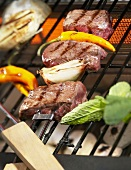 Grilled meat and vegetable kebabs
