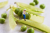 Little toy man on a pea pod