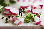 Little toy man among pieces of radish and cress