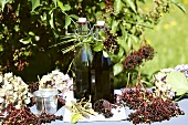 Two bottles of elderberry juice with elderberries & hydrangeas