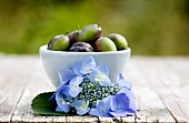 Hydrangea in front of a small bowl of damsons