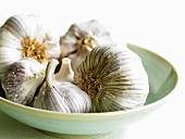 Garlic bulbs in a small dish