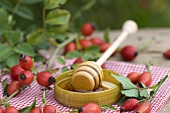 Rose hip honey on a honey dipper surrounded by rose hips