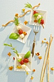 Tomatoes & mozzarella on rosemary skewers with savoury sticks