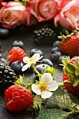 Strawberry flowers amongst fresh berries