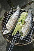 Trout stuffed with herbs on barbecue