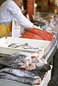 Fresh fish on a market stall
