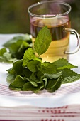 A glass of peppermint tea with fresh peppermint