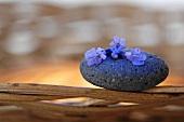 Lavender flowers on stone