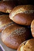 Sesame rolls at a market