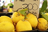 Lemons on a market stall