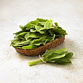 Fresh sorrel leaves in a basket and on the side