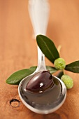 A spoonful of olive oil with a black olive and an olive sprig