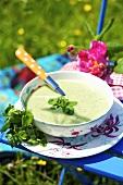 Cress soup on a garden chair