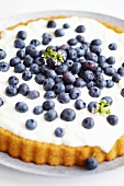 Blueberry tart (cropped)