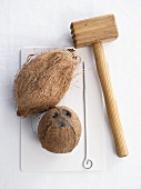 Coconuts and a meat tenderiser