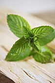 A sprig of mint on a wooden surface