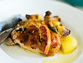 Pollo alla diavola (spicy chicken with rosemary, Italy)