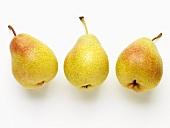 Drei Birnen, Sorte Forelle