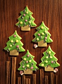 Five iced Christmas tree biscuits (Spekulatius)