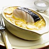 Cod in potato gratin in a baking dish