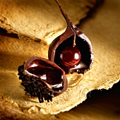 Halved chocolate, filled with cherry and cherry liqueur