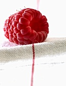 A raspberry on a tea towel