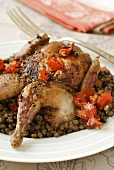 Roast quail on lentils and tomatoes