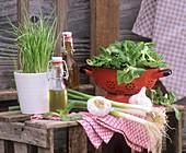 Stillleben mit Zwiebelgemüse, Feldsalat und Öl im Freien