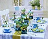 Springtime table decoration