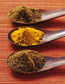 Ras el hanout, Madras curry powder, garam masala on wooden spoons