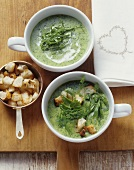 Sorrel soup and spring herb soup with croutons