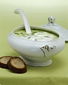 Ramsons (wild garlic) soup in soup tureen, two slices of bread