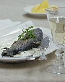 Trout Meuniere with cream sauce and potatoes