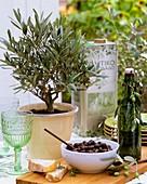 Olivenbäumchen, eingelegte Oliven und Olivenöl