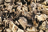 Dried black cohosh root, full-frame
