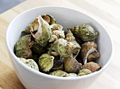 Whelks in a bowl