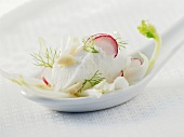 Fresh goat's cheese on fennel with radishes on china spoon