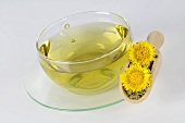 Coltsfoot tea with flowers and leaves in a wooden scoop