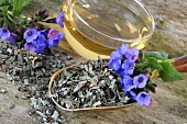 Dried lungwort with flowers and a cup of tea