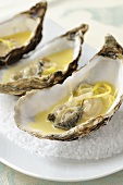 Three oysters in white wine sauce on a bed of salt