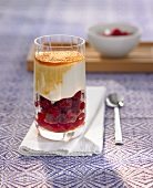 Raspberries with yoghurt cream and cane sugar in a glass