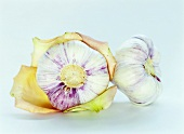 Two garlic bulbs with rose petals