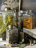Dried medicinal plants in screw-top jars