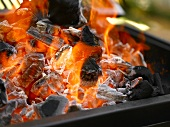 Burning charcoal in a barbecue
