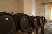 Barrels of balsamic vinegar in a cellar, Modena