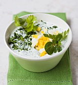 Frankfurt green sauce with herbs and egg