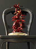 Dried chillies hanging over the back of a chair